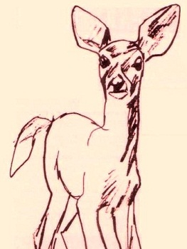 THE YEARLING Artwork